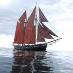 Unser Jubiläumsschiff auf dem Weg nach Schweden